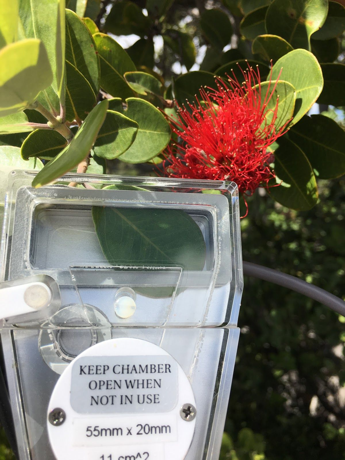 The Ryers use one of our CID leaf chambers in order to measure the rate of photosynthesis in a single leaf with the CI-340 Handheld Photosynthesis System.